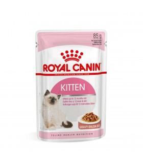 Royal canin kitten salsa 12 buste 85 gr