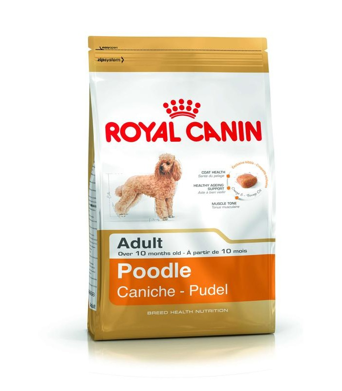 Royal canin poodle adult 500 gr