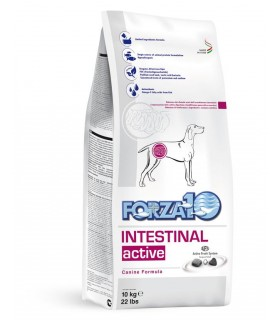Forza 10 cane intestinal active 10 kg