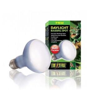 LAMP R20/75W SUN GLO PT 2132