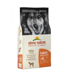 Almo nature holistic cane adult large con agnello 12 kg
