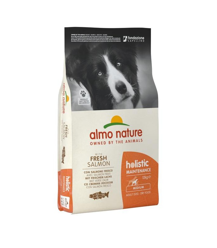 Almo nature holistic cane adult medium con salmone 12 kg