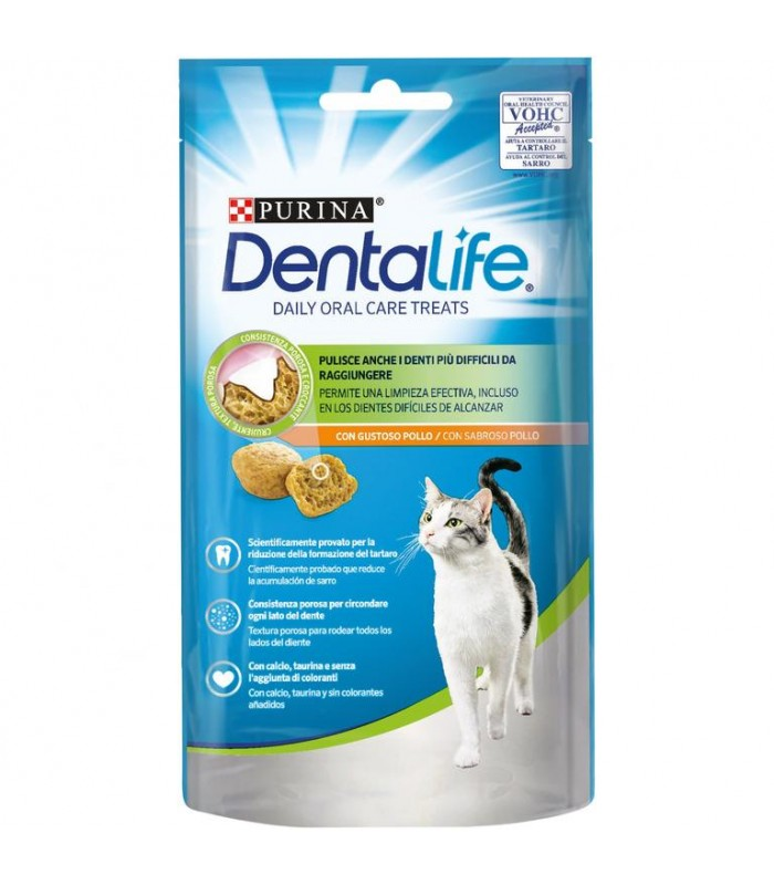 Purina dentalife gatto salmone 40 gr