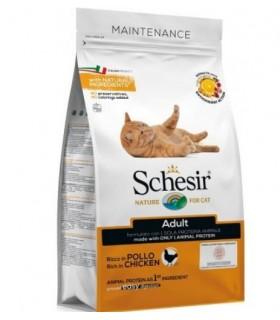 Schesir gatto adult Mantenimento ricco in pollo 400 gr