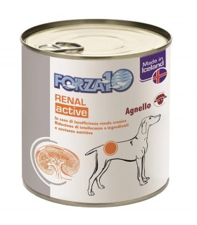 Forza 10 cane renal active wet all'agnello 300 gr