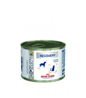 ROYAL CANIN RECOVERY 195GR