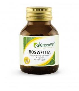 Apa-ct boswellia flacone 50 cps