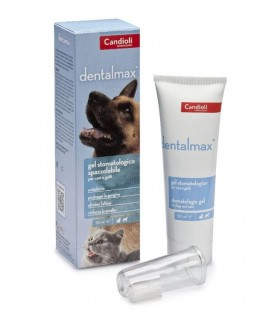DENTALMAX GEL STOMATOLOGICO 50 ML