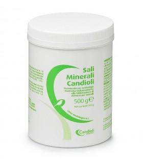Candioli sali minerali ornitologia 500 gr