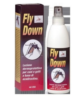 FLY DOWN 250 ML