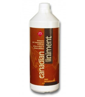 Fm italia canadian liniment 1000 ml