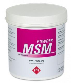 Fm italia powder msm 600 gr