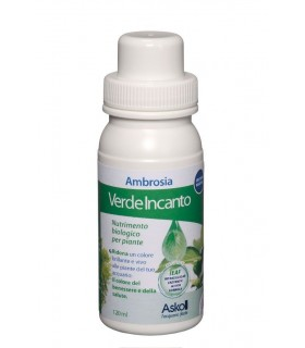 NEW VERDE INCANTO 120 ML