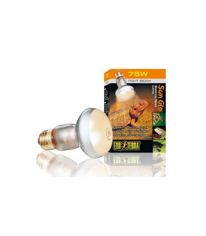 LAMP S20/75W SUN-GLO PT2136