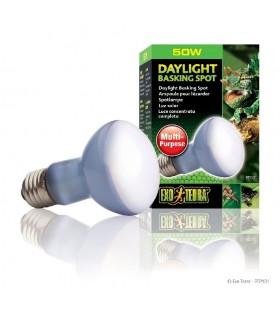 LAMP R20/50W SUN GLO PT-2131