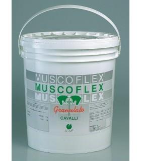 Acme muscoflex granulato 5 kg