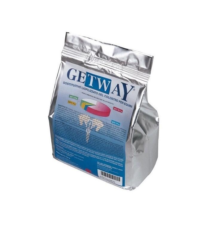 GETWAY POLV. 450 GR