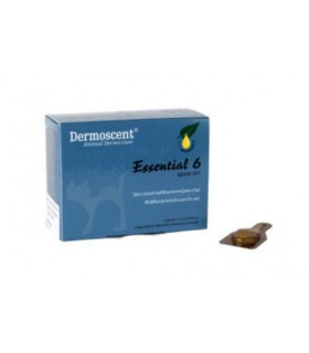 Dermoscent essential 6 spot-on gatto