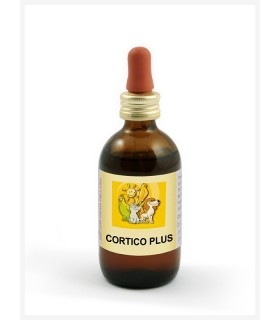 Apa-ct cortico plus 50 ml