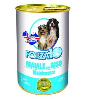 Forza 10 cane adult mantenimento maiale con riso 400 gr