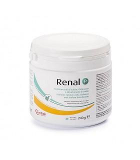 Candioli renal P 240 gr