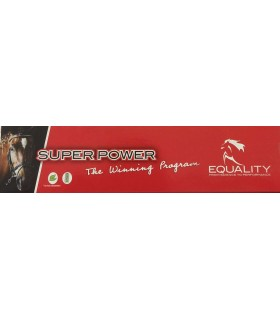 Equality super power siringa pasta orale 50 gr