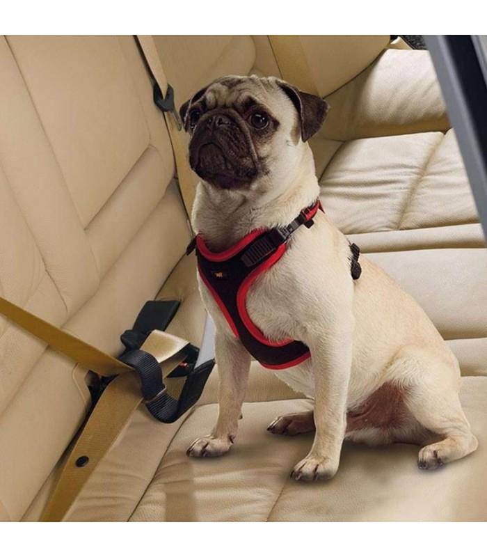 ferplast dog travel belt cintura di sicurezza per cani
