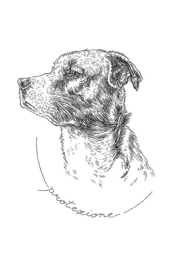 linea antiparassitari per cani