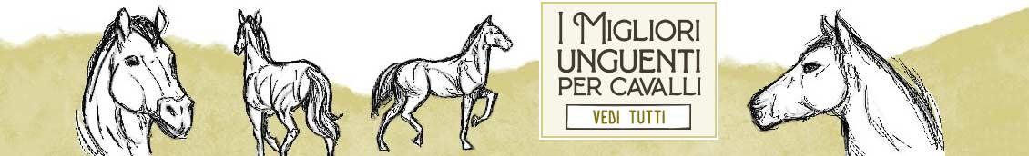 I Migliori Unguenti per Cavalli